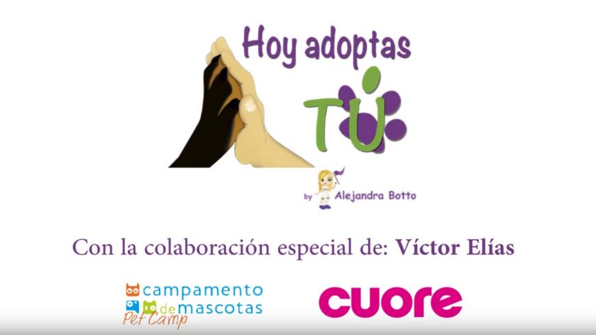 Adopción: Una segunda oportunidad