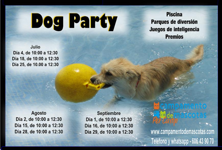 DOG PARTY EN CAMPAMENTO DE MASCOTAS