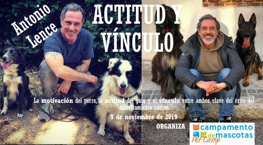 Actitud y vínculo, Workout por Antonio Lence