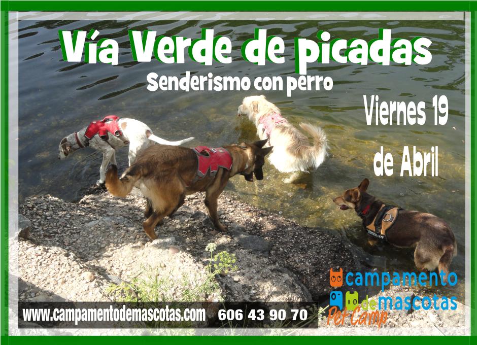 """Senderismo con perro 19 de abril: """"Vía Verde de Picadas"""""""