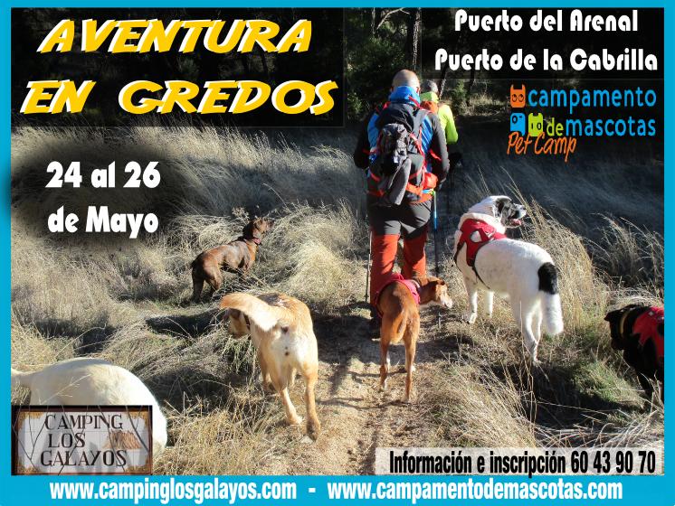 Fin de semana de Senderismo con perro en Gredos