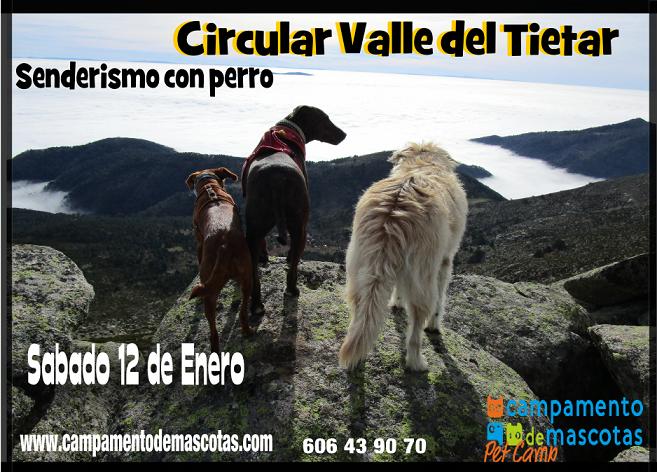 """Senderismo con perro 12 de enero: """"Puerto de Casillas"""""""