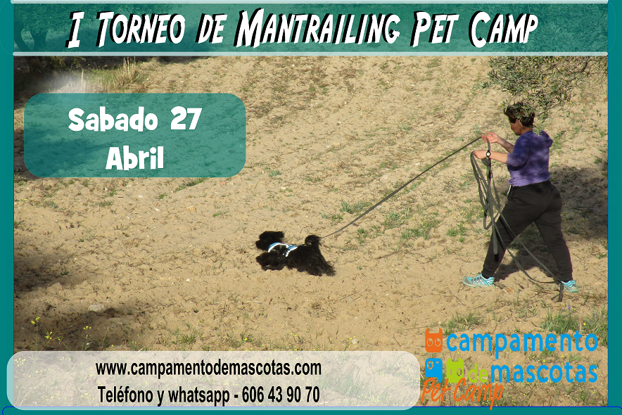 I Torneo de Mantrailing para miembros del Club Pet Camp