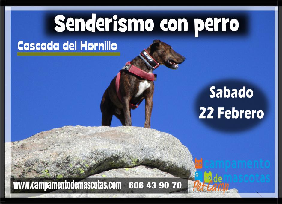 """Senderismo con perro 22 de febrero: """"Circular Cascada del Hornillo"""""""